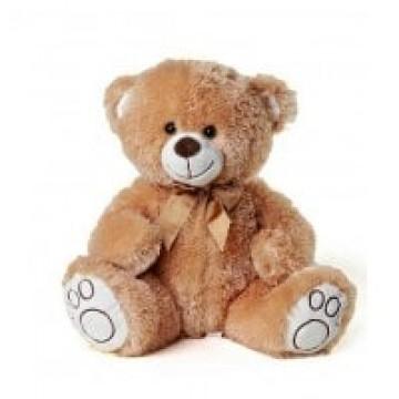 Brown Teddy Bear HT20cm