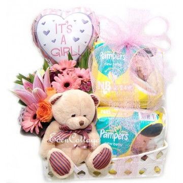 Baby Gifts Hamper NB08