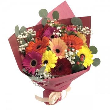 Gerbera Bouquet HBG6
