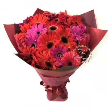 Gerbera Bouquet HBG8