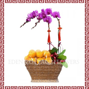 CNY Mandarin Oranges Basket with Phalaenopsis Orchids CNF02