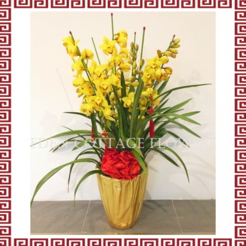 CNY Potted Cymbidium Orchids CNP07