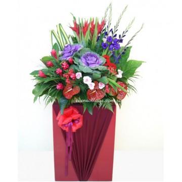 Congratulation Floral Stand CS27
