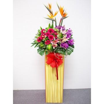 Congratulation Floral Stand CS03