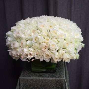 99 White Roses In vase FAV27