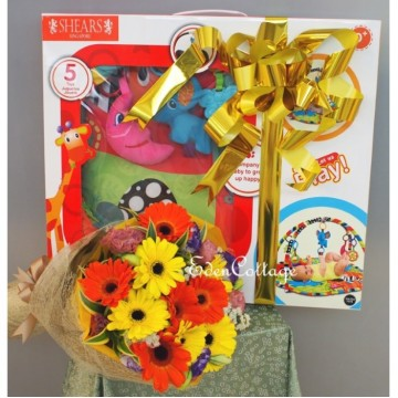 Baby Gifts Hamper NB14