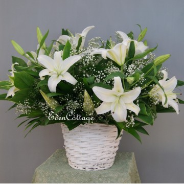 Lily Table Flowers TF12