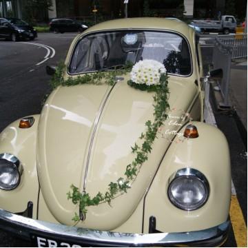 Elegant Bridal Car Decorations