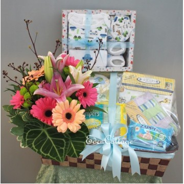 Baby Gifts Hamper NB10